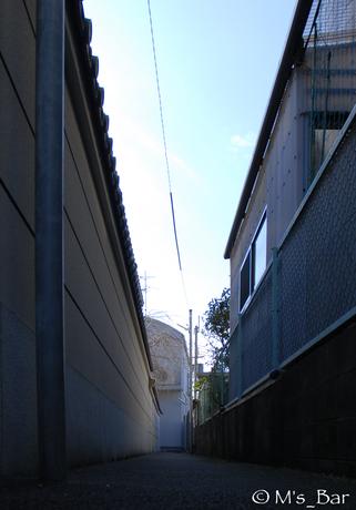 DSC_7808.jpg